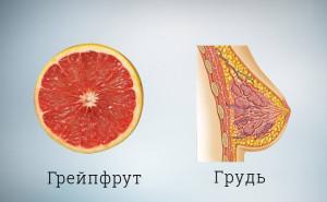 Грейпфрут похож на грудь